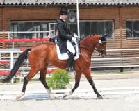 Ośrodek Jeździecki Stragona