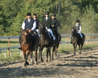 Klub Jeździecki Huzar