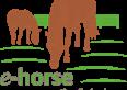 e-horse.pl Wszystko dla hodowcy