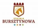 Stajnia Bursztynowa