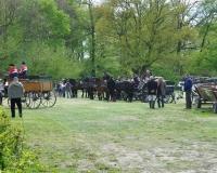 Stadnina koni w Jeżowie