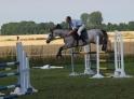 KJ Black Pony