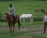 Rancho Zielony Koń