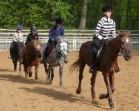 Klub Jeździecki AMIGO