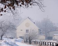 Mazurek - Hodowla i Sport